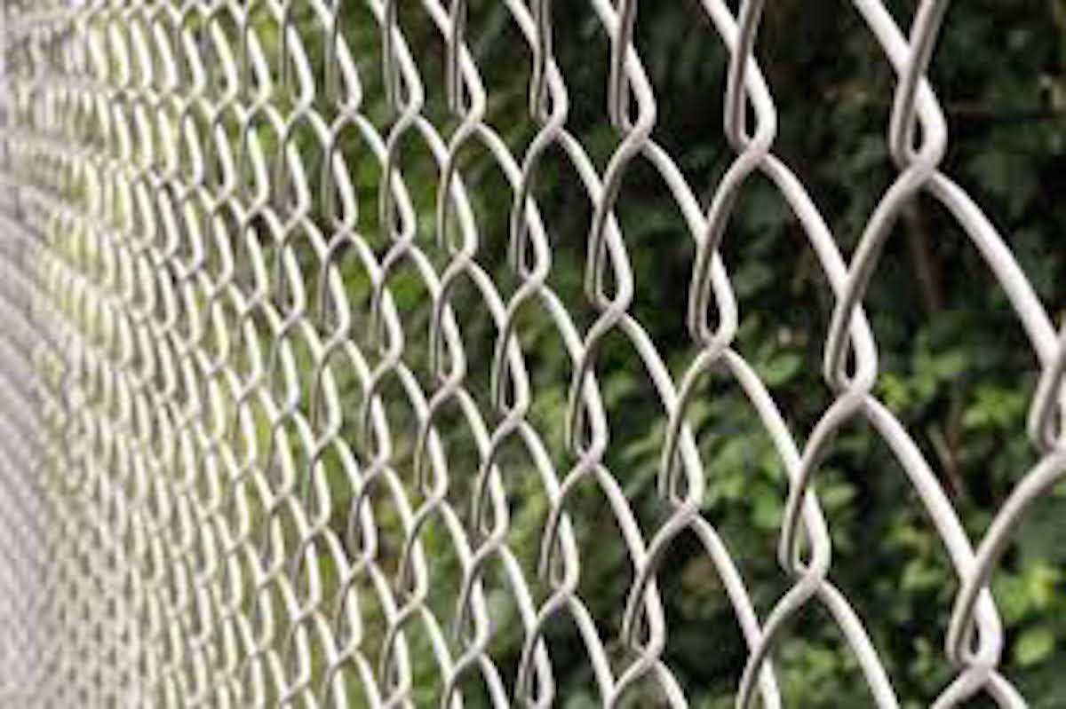 chain link fencing plantation